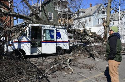 wind-knocks-down-trees-around-town