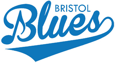 woman-sues-bristol-over-injury-suffered-at-blues-game