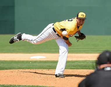 new-britain-bees-lose-rainshortened-game-to-ducks
