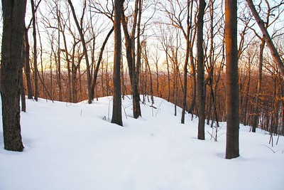 newington-hopes-to-secure-transfer-of-cedar-mountain-parcel-from-state