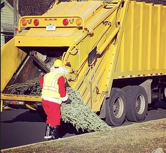 need-to-dispose-of-your-christmas-tree-heres-everything-you-need-to-know