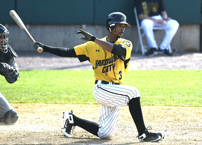 new-britain-bees-fall-short-of-firsthalf-playoff-berth-following-eighth-inning-collapse-against-long-island-ducks