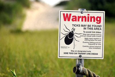 public-health-officials-concerned-about-tickborne-diseases