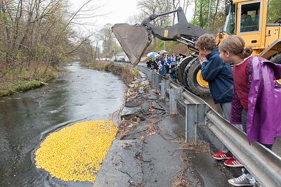 pequabuck-river-duck-race-returns-oct-3