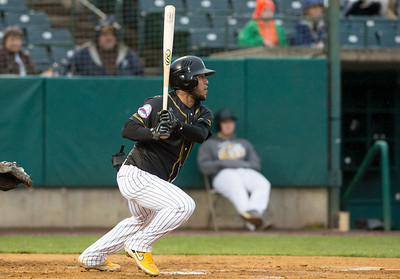 trio-of-home-runs-power-new-britain-bees-past-long-island-ducks-to-split-series