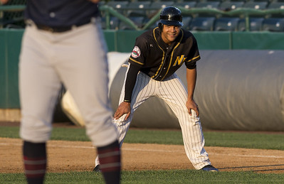 new-britain-bees-hit-seasons-stretch-run-seeking-playoff-berth