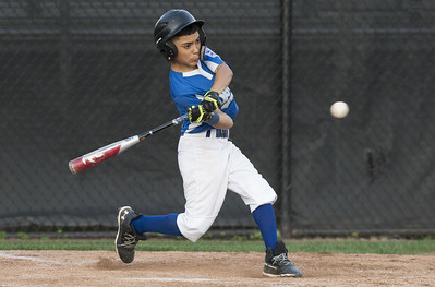 its-a-team-effort-for-forestville-dodgers-as-all-players-contribute-to-teams-success-in-seeking-city-series-title