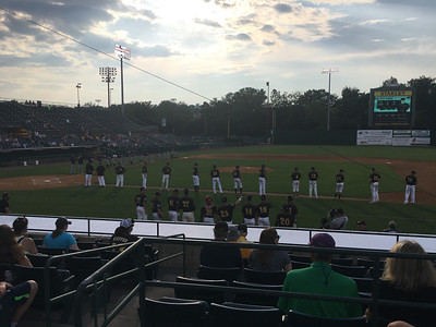 new-britain-bees-welcome-baseball-back-to-city-pick-up-victory-to-begin-futures-league-era