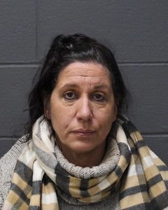 southington-woman-allegedly-sold-puppy-that-was-too-young-police