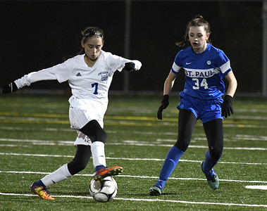 with-offensive-question-marks-st-paul-girls-soccer-to-rely-on-experienced-defense-allstate-goalkeeper