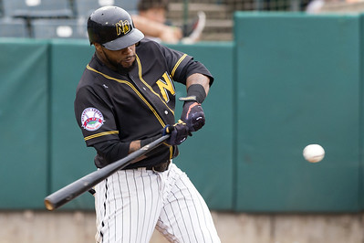 new-britain-bees-head-into-next-series-with-plenty-of-momentum-after-taking-three-of-four-from-long-island-ducks